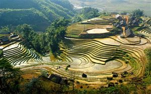 Terraced rice fields in Sa Pa, Lào Cai Province. The destination is suitable for tourists from Hà Nội on short holidays.