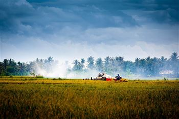 EXPERIENCE THE RURAL VIETNAMESE LIFE IN 3 DAYS
